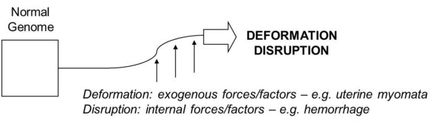 Deformation Desruption