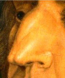 Habsburg Nose